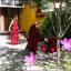 Круглый стол, посвященный 600-летней дате ухода в паринирвану Чже Цонкапы