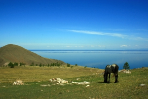 Equestrian mini-tour & quot; Baikal gold rush & quot; (weekend itinerary)